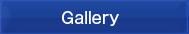 Gallery ギャラリー